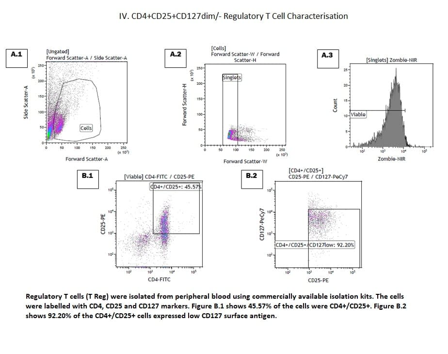 CD4+CD25+CD127dim- Regulatory T Cell Characterisation