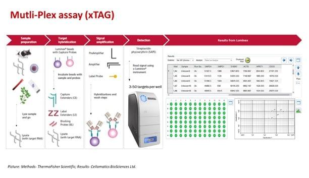Molecular assays- 2