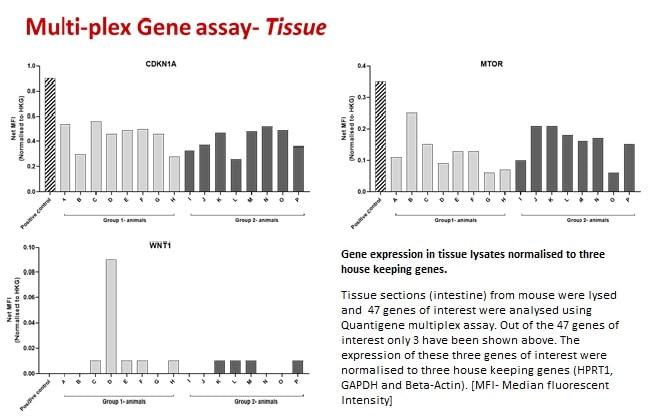 Molecular assays- 5