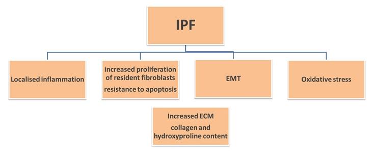 Pulmonary Fibrosis-1