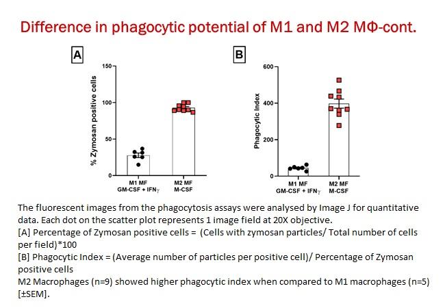 Phenotype based imaging 11